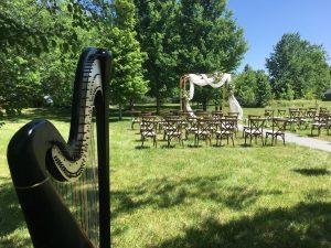 Champaign Harpist