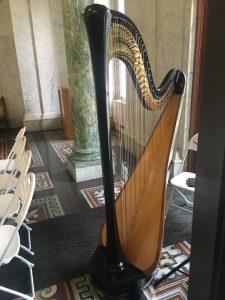 Harp Player Fort Wayne Wedding