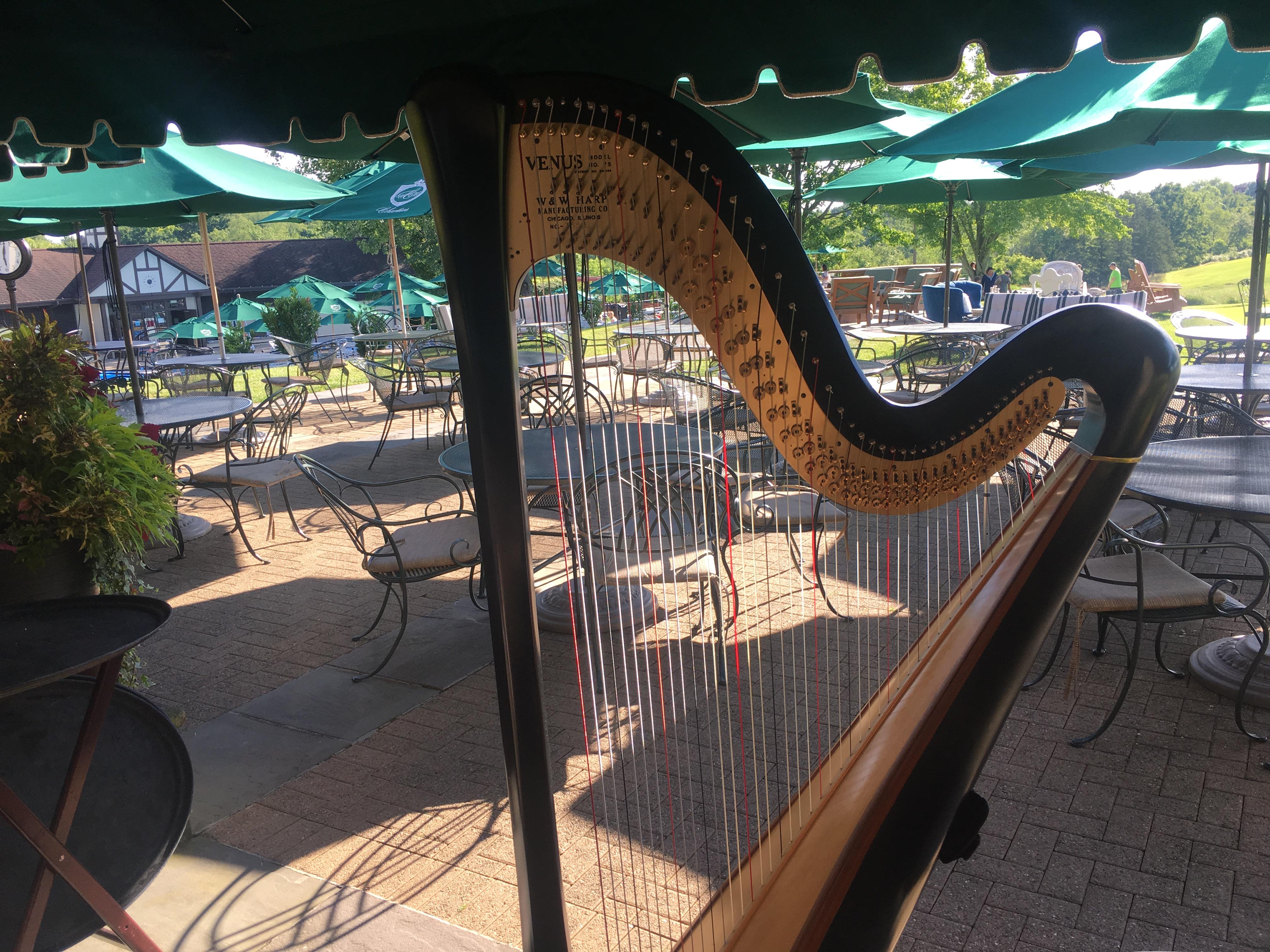 Pittsburgh Harp Player