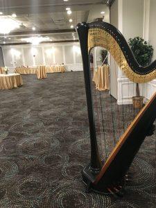 Decatur Illinois Harpist