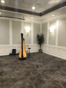 Decatur Wedding Harpist