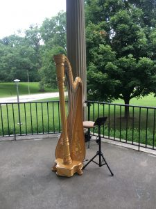 Springfield Harpist