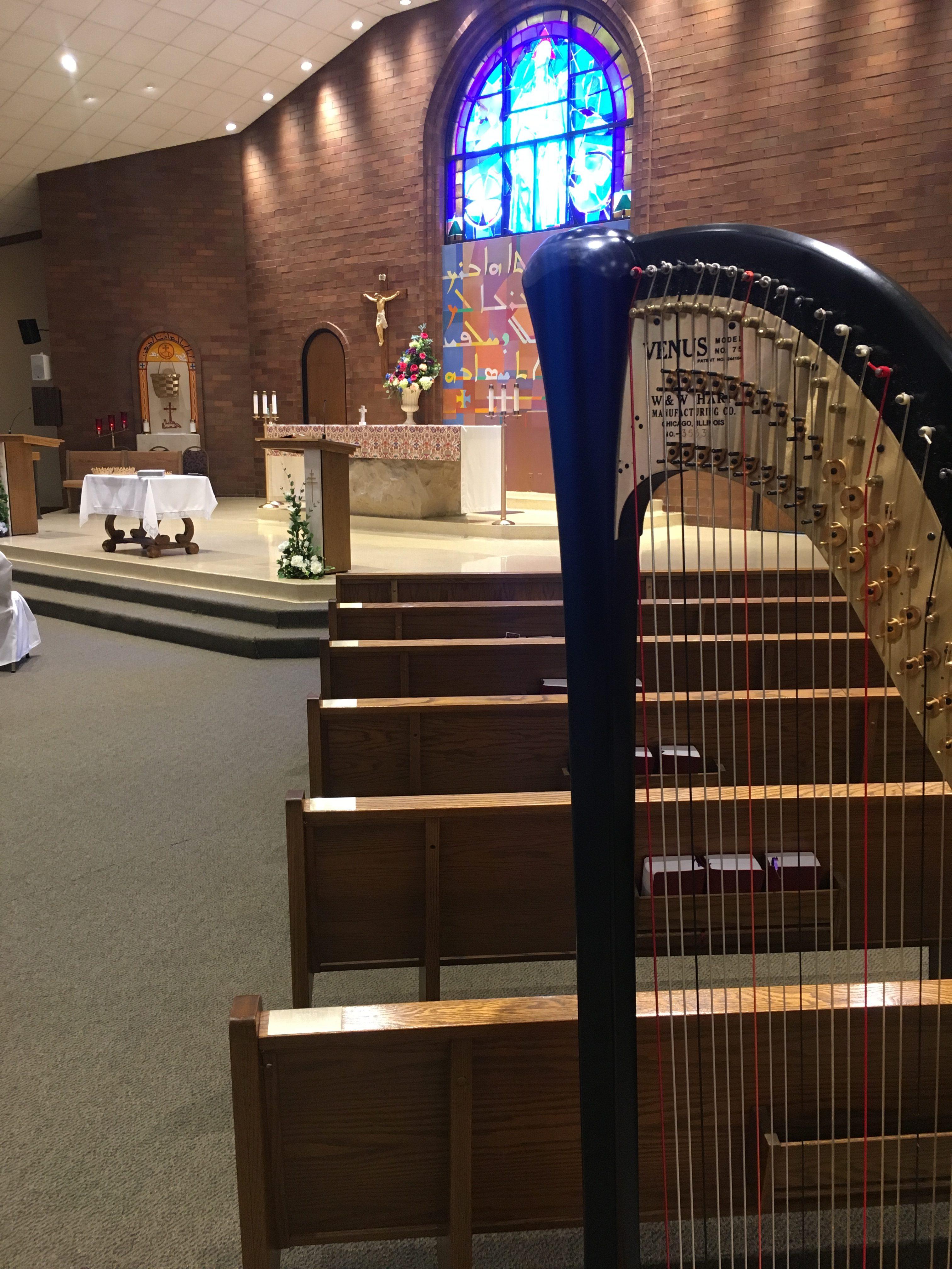 Youngstown Wedding Harpist
