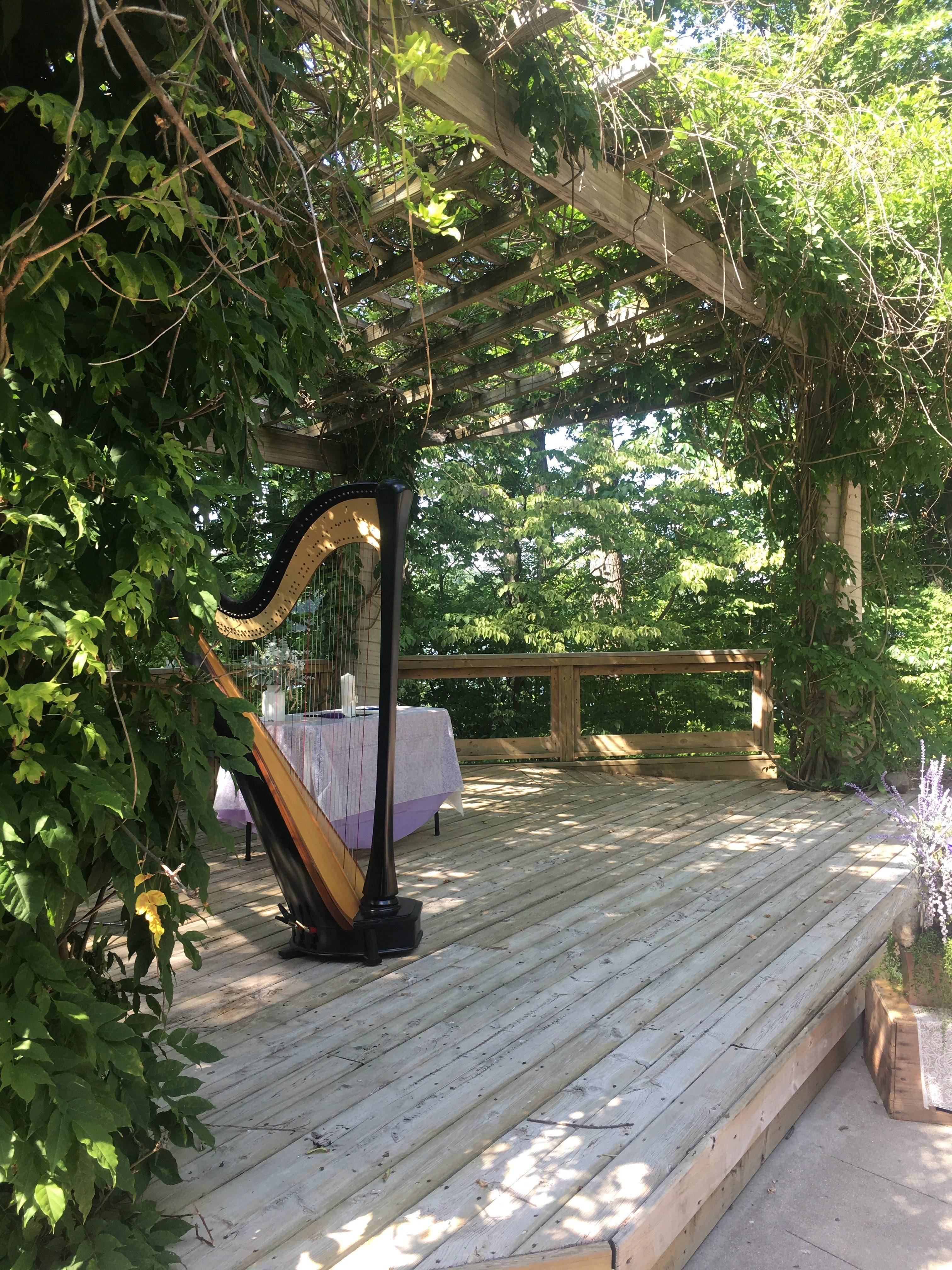 Battle Creek Harpist