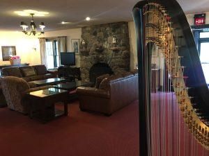Harpist Springfield OH