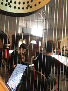 Harp and String Quartet Wisconsin