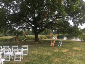 Harpist in Southern Illinois
