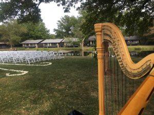 Southern IL Wedding Harpist