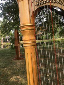 Robinson Illinois Harpist