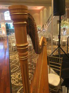 Arabic Harpist Chicago