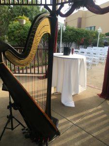 Merrillville Harpist