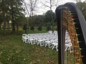 Iowa City Harpist for Weddings