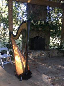 Central Mississippi Harp Player