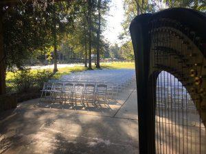 Wedding Harpist Jackson MS