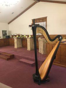 Mississippi Harpist