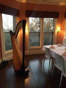 Iowa Harpist