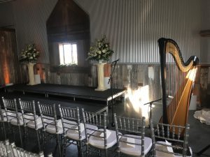 Shelbyville Harp Player
