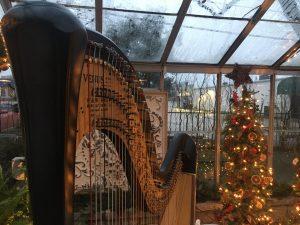 Harp Music Champaign-Urbana