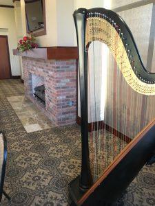 Central Missouri Harpist