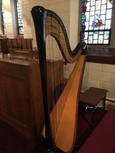 Harpist in Wisconsin Dells