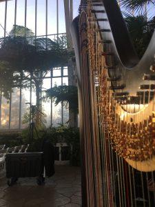 St. Louis Wedding Harpist