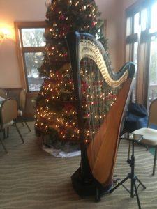 St. Louis Harpist
