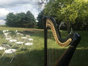 Harpist in Minnesota
