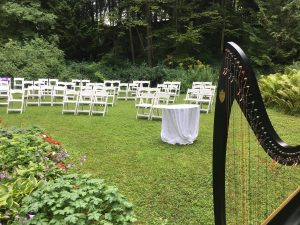 Mackinac Island Harpist