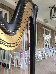 Northwest Indiana Wedding Harpist