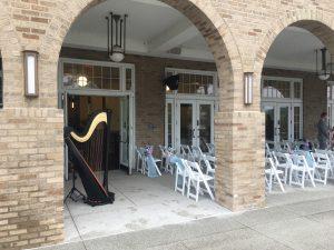 Harpist in Northwest Indiana