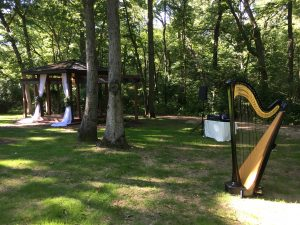 Wedding Harpist Rockford IL