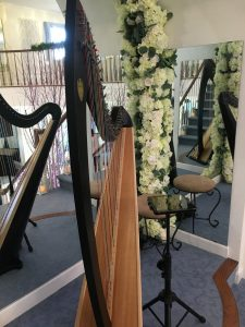 Madison WI Wedding Harpist