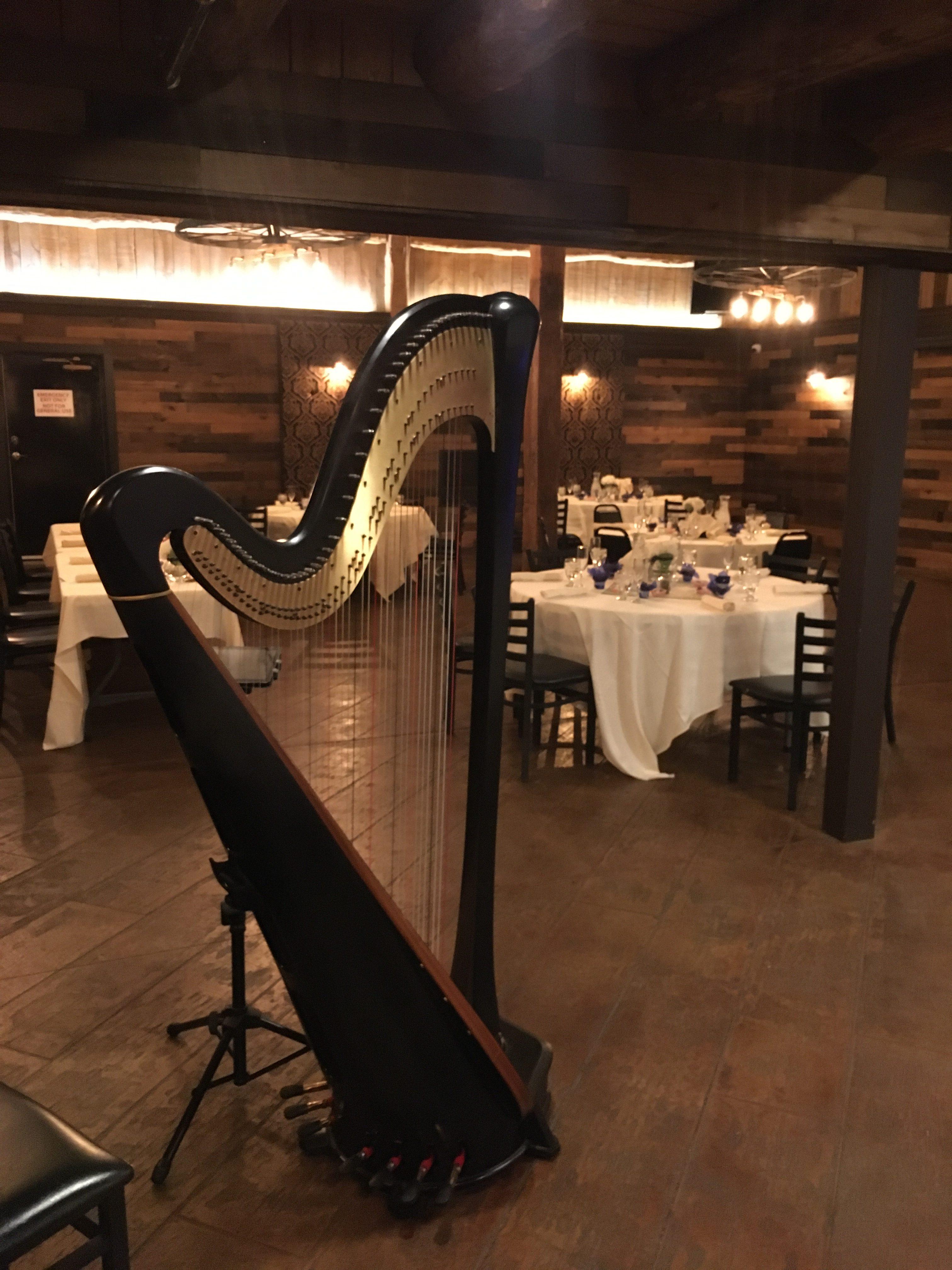 Harp in Western Wisconsin