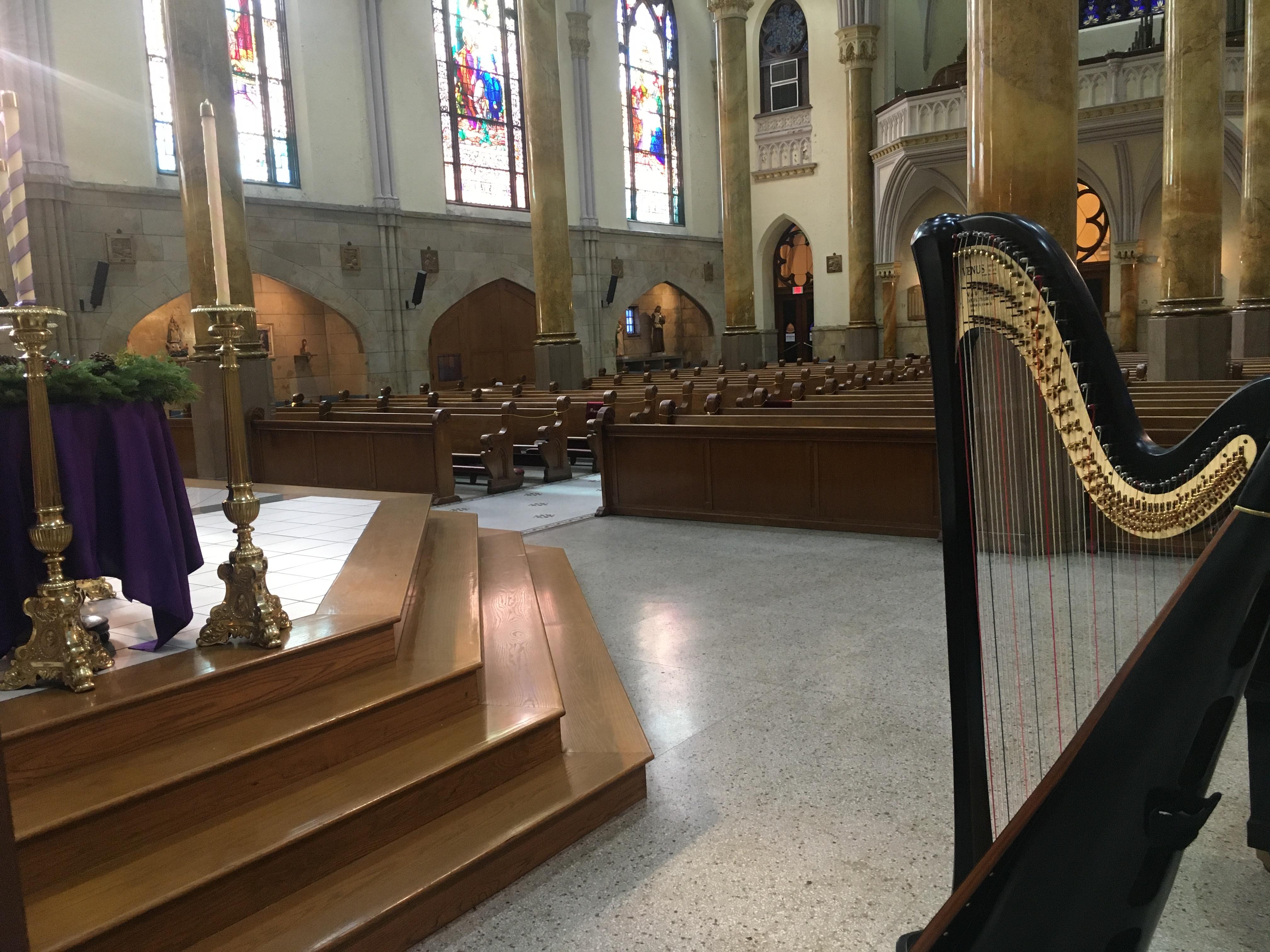 Indy Wedding Harpist