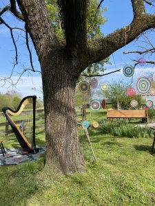 Hot Springs Wedding Harpist