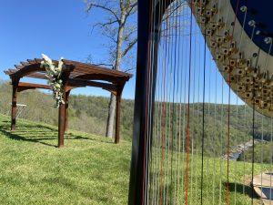 Charleston Harpist