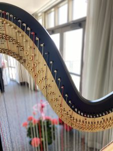 Madison Wisconsin Harpist