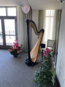 Harpist in Madison WI