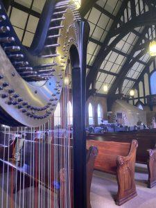 Tri-Cities Wedding Harpist