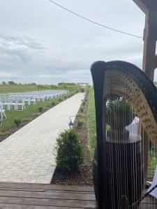 Harpist in Southern Iowa