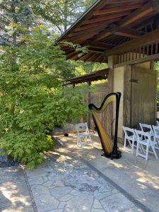 Wedding Harpist in Rockford IL