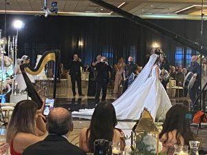 Arabic Harpist Detroit MI