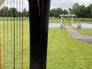 SW Michigan Wedding Harpist