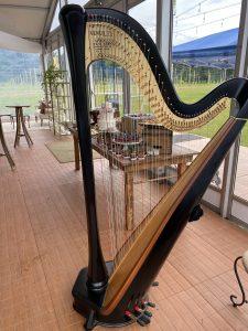 Michigan Harpist for Weddings