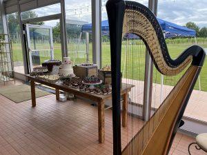 Harpist in Southwest Michigan