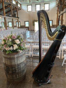 DeKalb IL Harpist