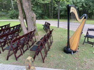 Birmingham AL Harpist