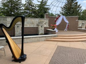 South Bend Wedding Harpist
