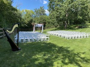 Milwaukee Wedding Harpist