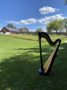 Harpist in Waukesha